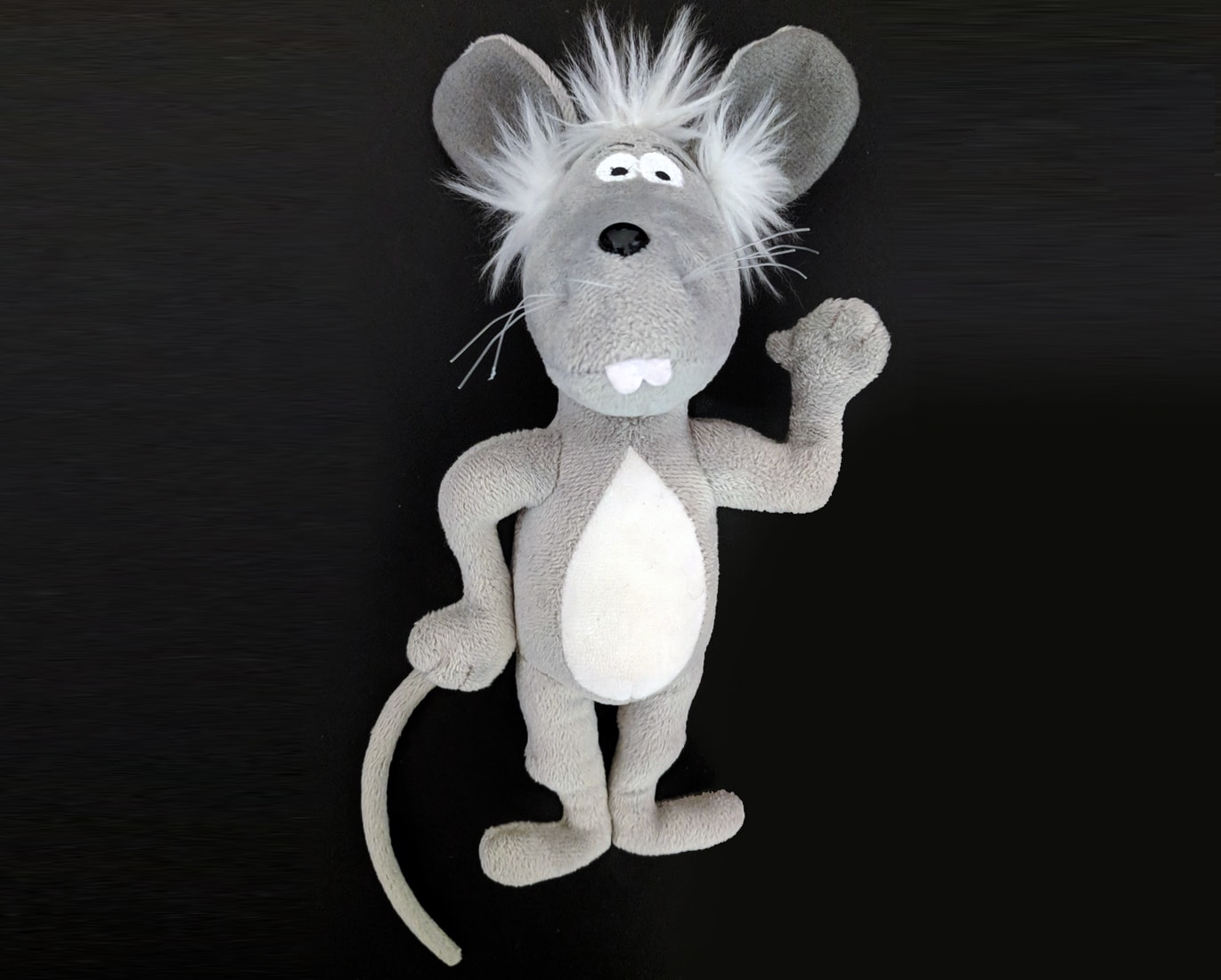 Martin the Mouse and A Mouse in the White House Package